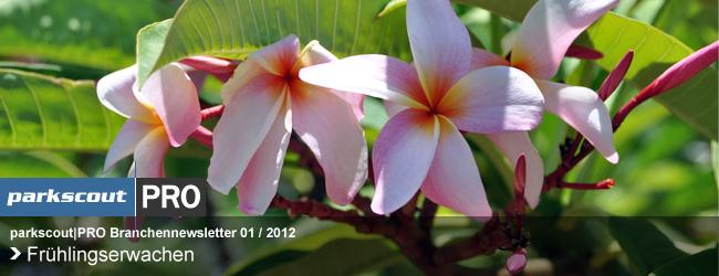 parksocut|PRO Branchnenewsletter 01 / 2012