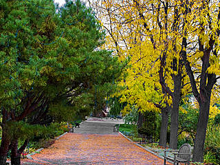 Herbst im Idaho Botanical Garden. © The Knowles Gallery