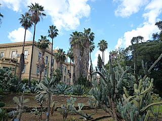 Im Botanischen Garten von Palermo. © freshcreator: site builder and booking engine