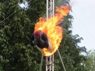 High Dive Stuntshow