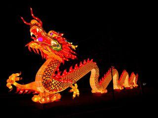 Chinesische Lichter © Allwetterzoo Münster